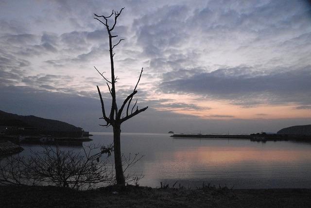 玉津港の朝焼け2