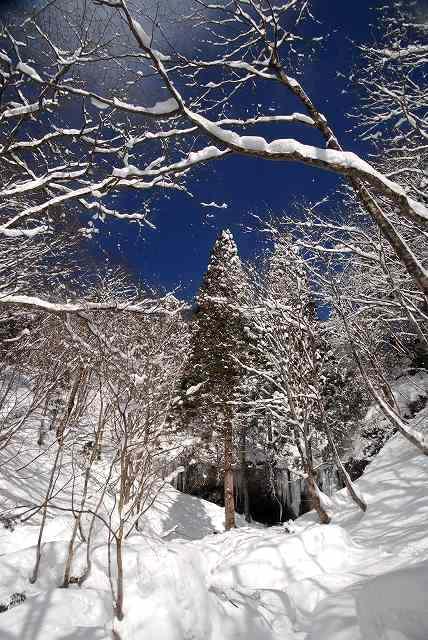 冬の岩井滝5