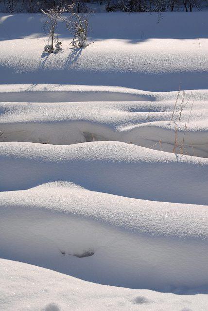 上斎原の雪景色3