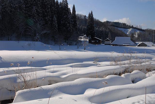 上斎原の雪景色1