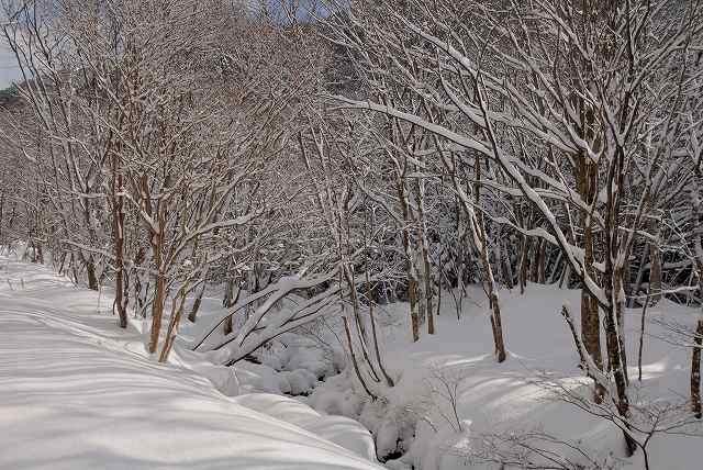 上斎原の雪景色9