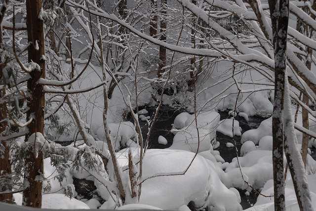 上斎原の雪景色10