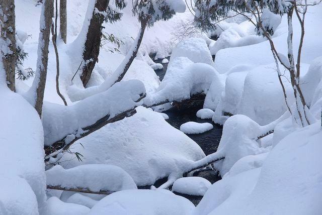 上斎原の雪景色12