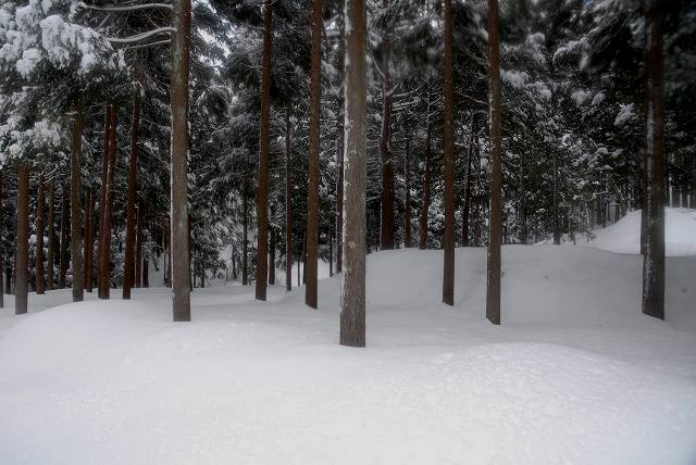 上斎原の雪景色13