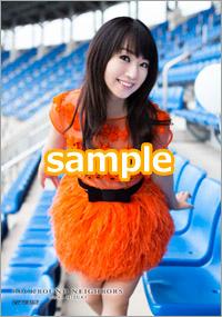 9th_bro_orange.jpg