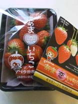 nana_phot_20130130.jpg