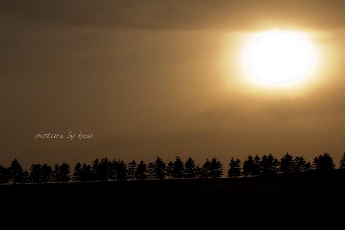 201204moere-y1.jpg