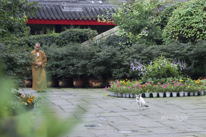 2012houkoku2.jpg