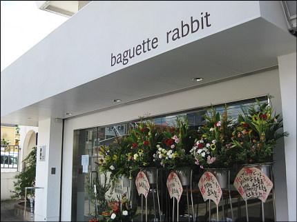 rabbit1.jpg