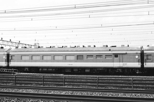 0ec581d-26_198611_0015.jpg