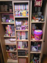 現在の本棚