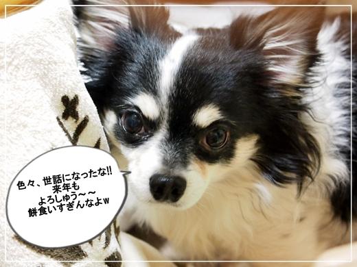 039_20121231103600.jpg