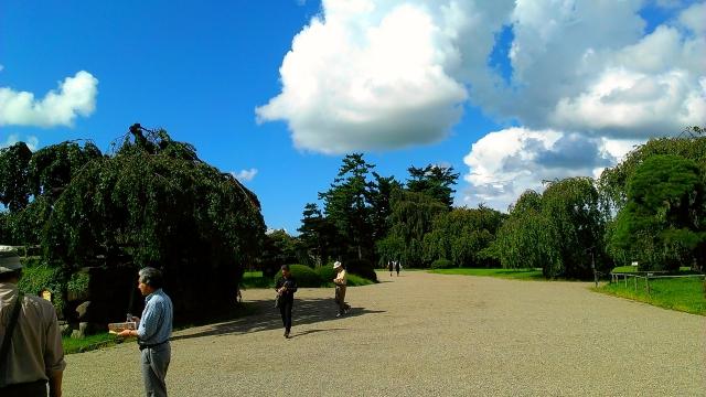 2014-09-13_13-41-11.jpg