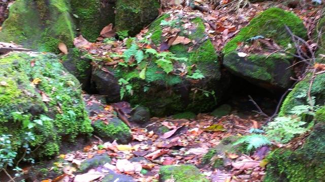 2014-10-16_14-31-43.jpg