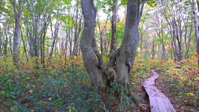 2014-10-16_14-47-32.jpg