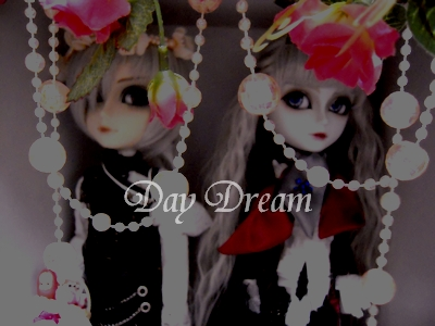 DSCN1084.jpg