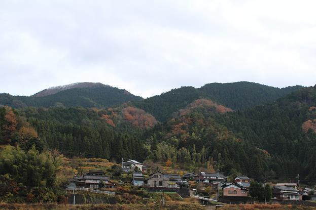 nyako20121211_5.jpg