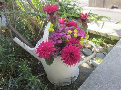 6-29切り花