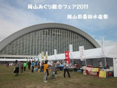 risaizuIMG_6413.jpg