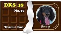 35 terry