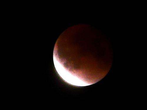 luna P1210601-01