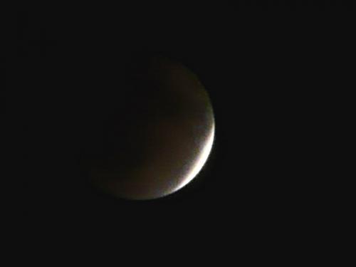 luna P1210461-01