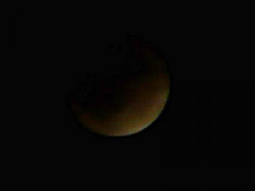 luna P1210496-01