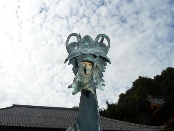 龍背景空6