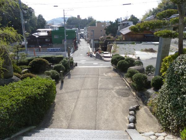 ネオン坂9