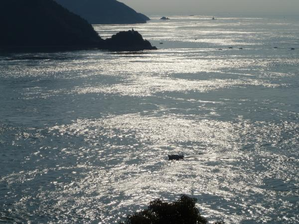 来島海峡と船1
