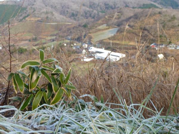 霜と牧場5