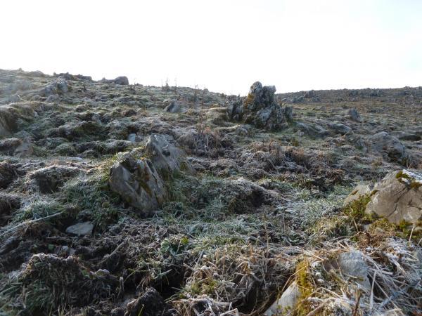 霜と石灰岩2
