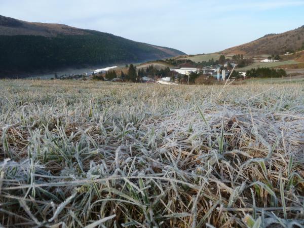 霜と牧場6