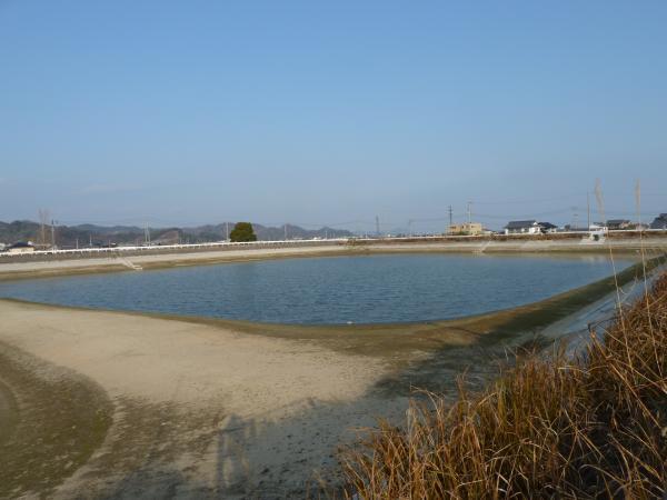 志津川池1