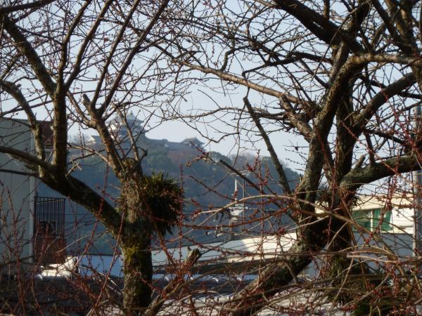 一草庵とお城3