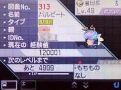P1011937.jpg