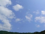 P2460959.jpg