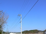 P2570049.jpg
