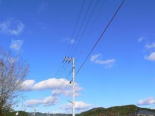 P2570528.jpg