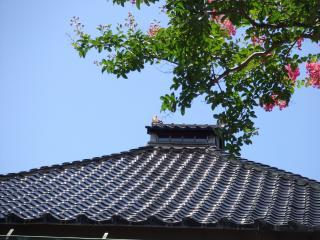 2011_0807金沢0035_convert_20110808193330