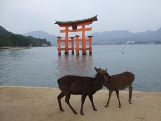 2012_1112広島0028