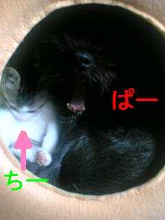05-11-10_12-57.jpg