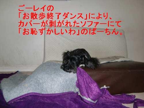 PO20100719_0007.jpg