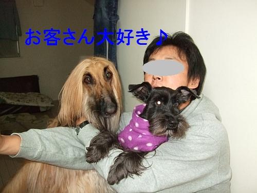 PO20110106_0001.jpg