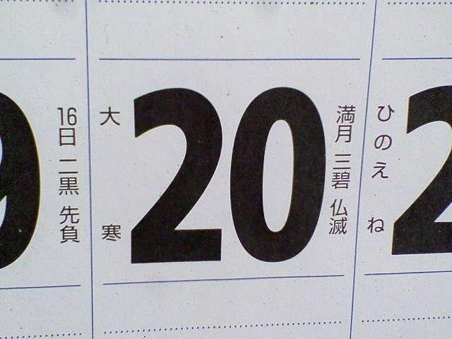 201101200942000.jpg