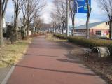 20110130suwako 048