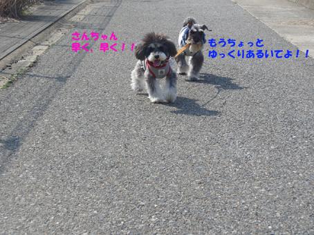 いーちゃんゆっくり歩いてよ!!