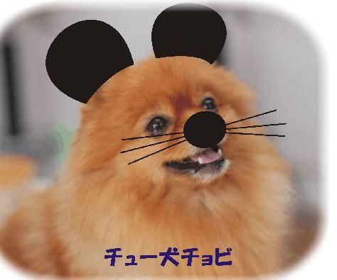 ちょび2008