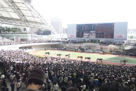 阪神桜花賞