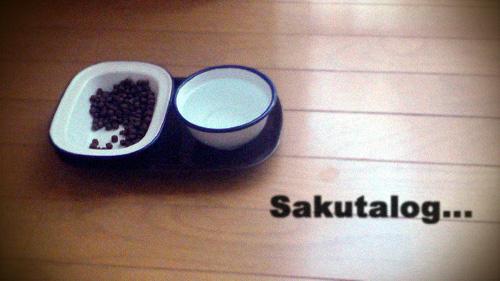 sakutalog... 猫と暮らすインテリア